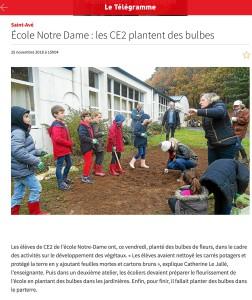 Les CE2 plantent des bulbes