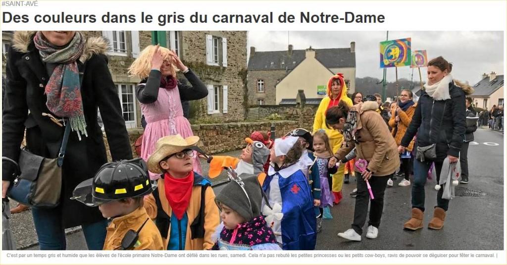 Des couleurs dans le gris du carnaval de Notre-Dame